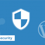 The WordPress Experts 3 wordpress security