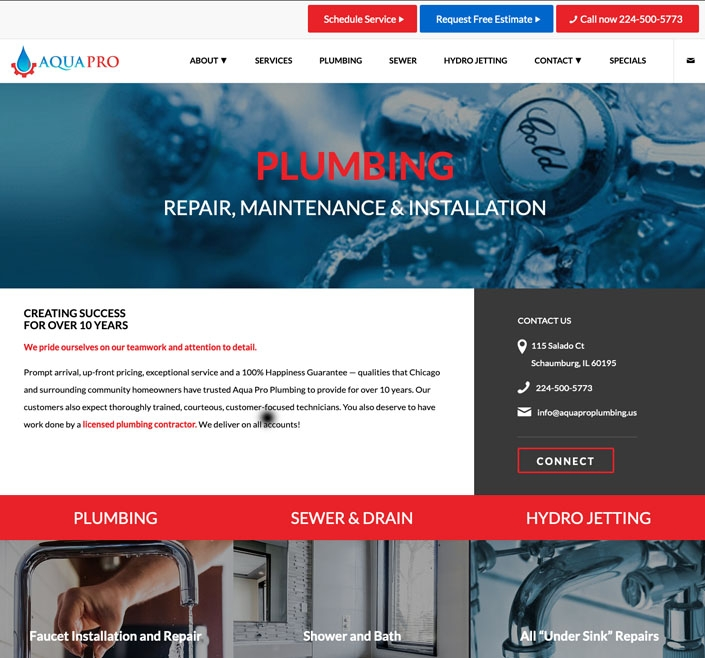 Website Design 10 work 0008 aqua pro
